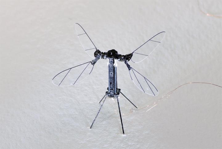disenan-robot-vuelo-insecto-720
